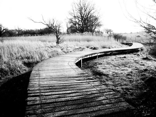 winding_path_to_nowhere